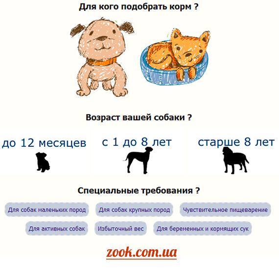 zook.com.ua поможет выбрать корм для кошки Sanabelle или подобрать корм для собаки Bosch