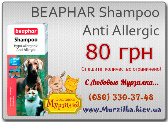 BEAPHAR Shampoo Anti Allergic