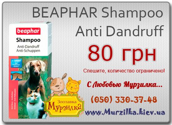 BEAPHAR Shampoo Anti Dandruff