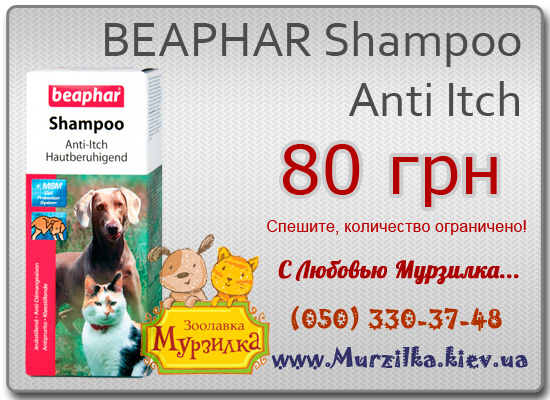 BEAPHAR Shampoo Anti Itch