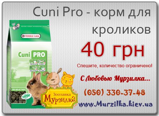 Cuni-Pro