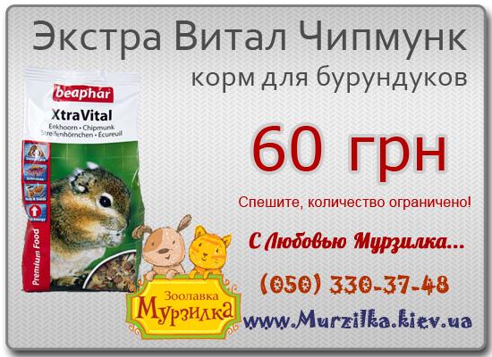 Экстра Витал Чипмунк - корм для бурундуков