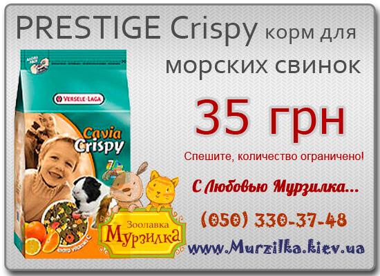 PRESTIGE Crispy корм для морских свинок